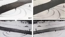 Comparaison des photographies en fonction de la version de l'oeuvre (Annual rings, D. Oppenheim, 1968)